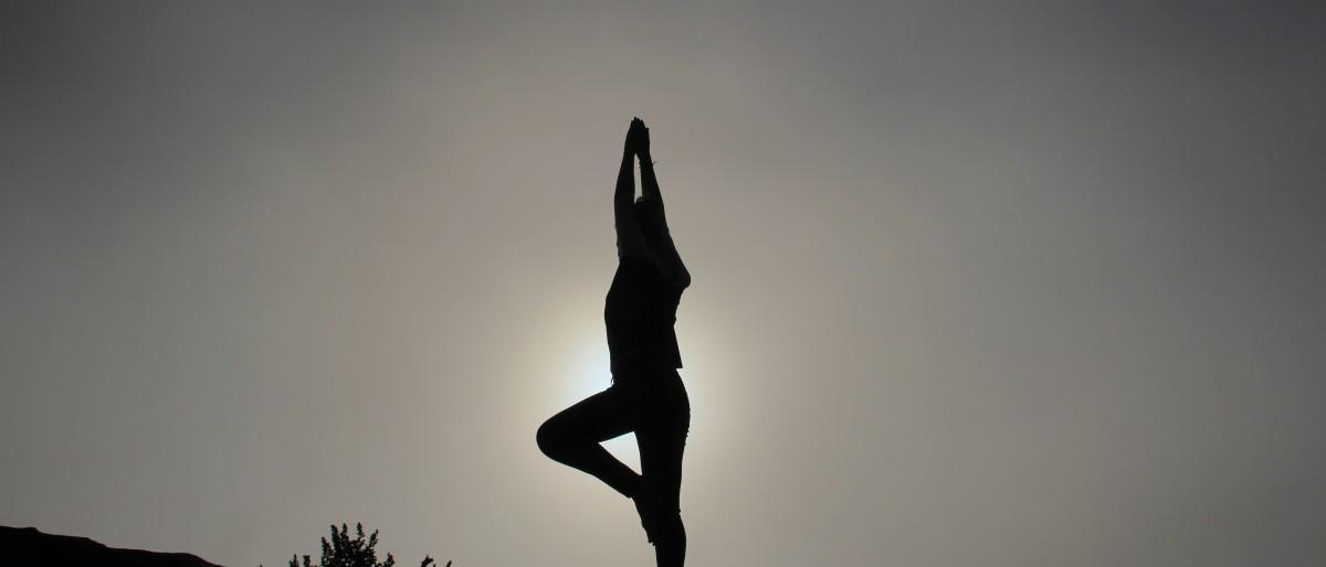 Permalink zu:Yogatherapie